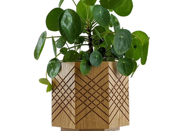 Handmade indoor planter pot money plant