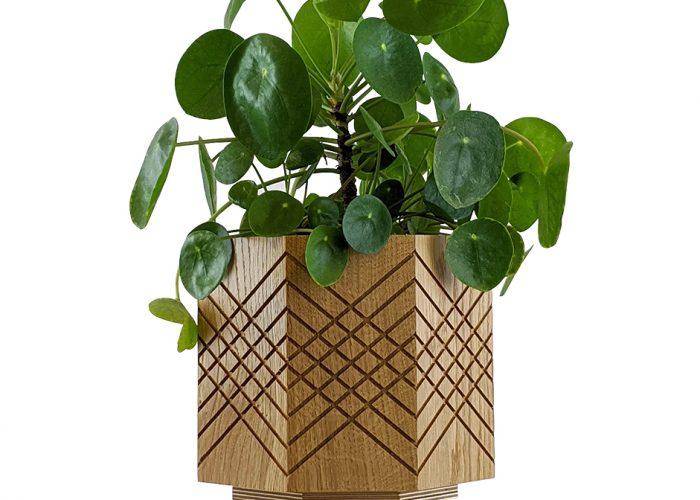 Handmade indoor planter pot money plant