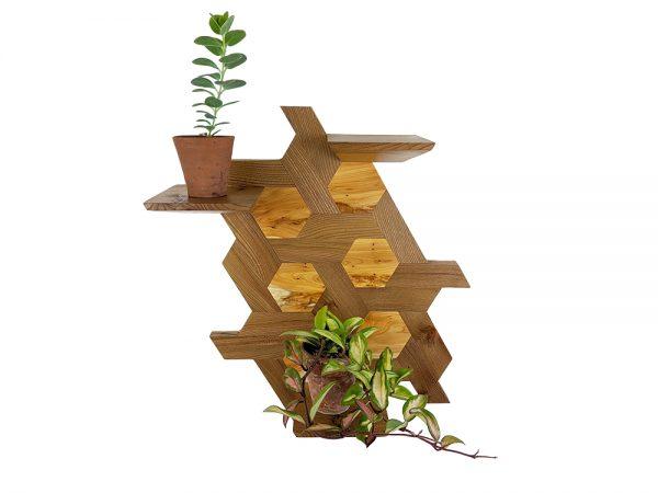 Elm and yew hexagone shelving plants