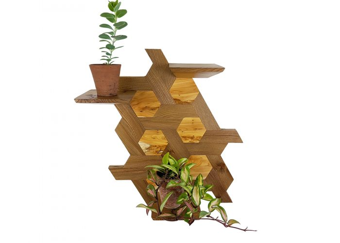 Elm and yew hexagone shelving plants