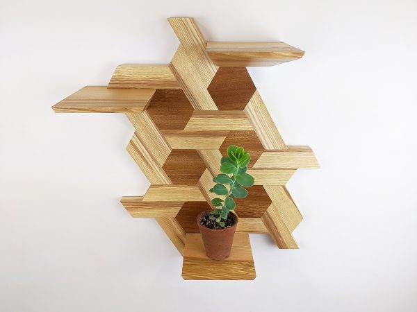 Ash and sapele hexagon shelving plant