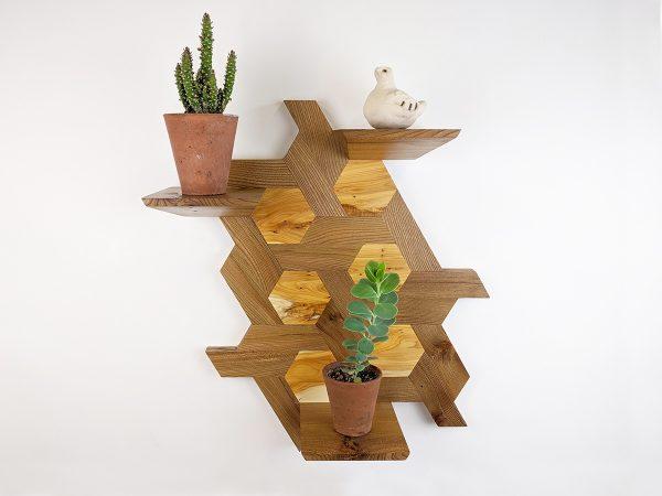 Elm and yew hexagon shelving cacti