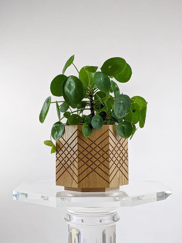 Handmade indoor planter pot pilea