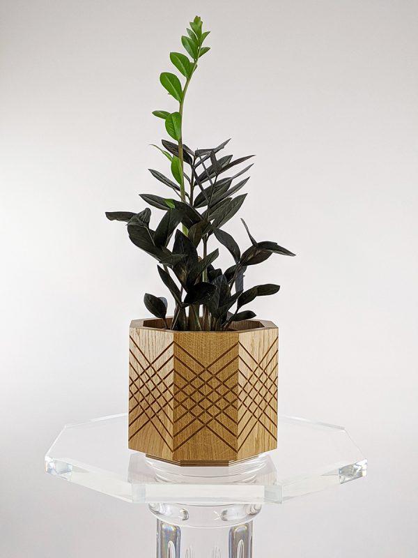 Handmade indoor planter pot zz raven
